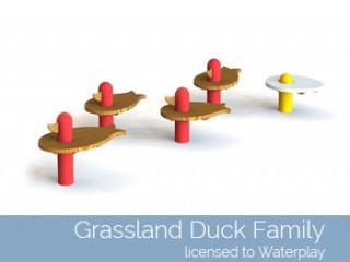 Grassland Duck Family
