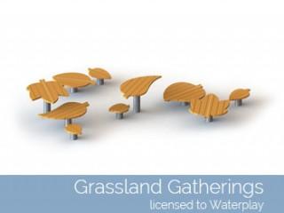 Grassland Gatherings